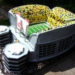 Groom's Cake 3- Heinz Field