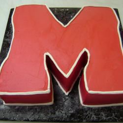 Groom's Cake 11- Miami University M