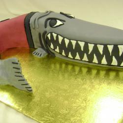 Groom's Cake 14- Muskingham Muskie