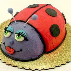 Shaped 143- Lady Bug