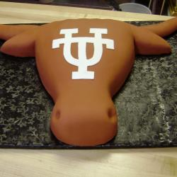Groom's Cake 15- Texas Longhorn