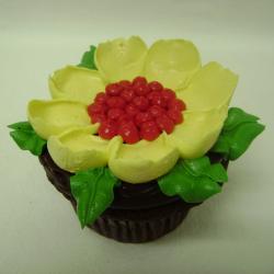 Cupcake 23