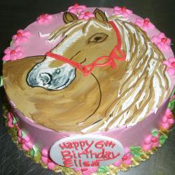 Children's Birthday 26