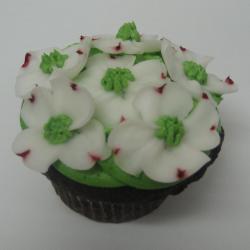 Cupcake 27