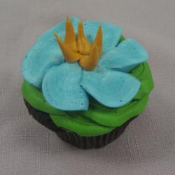 Cupcake 28