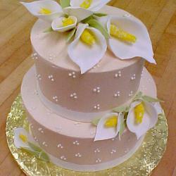 Bridal & Engagement 30