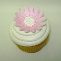 Cupcake 30
