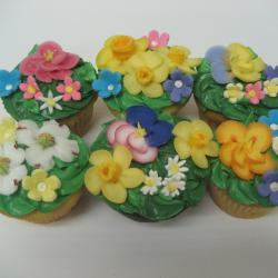 Cupcake 55